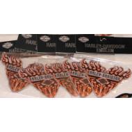 Harley Davidson nášivka - plameny
