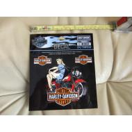 "Sticker Harley-Davidson, 3Pc Decal, DC788932, 3,6"" x 4"" - 1 Pc + 1,6"" x 1"" - 2 Pc"