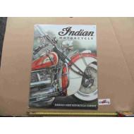 Plechová cedule Indian 30x40 cm