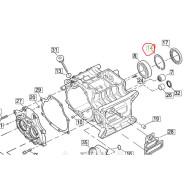 Harley-Davidson  Mainshaft Ball Bearing Retaining ring #11161