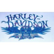 Harley Davidson dočasné tetování - #12